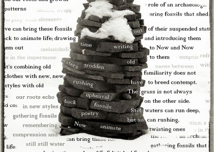 The Collector Of Stones Carved In Words